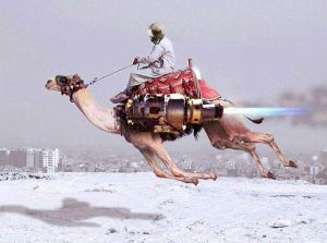 rocket-camel